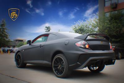 龙牌新能源汽车